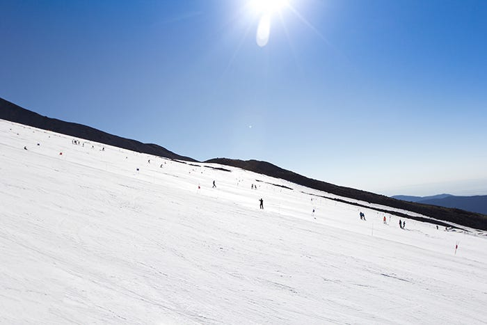 20+ ski camps set their gates across the massive, sun-scorched Palmer Glacier
