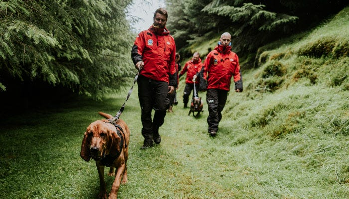 DWMRT volunteers training with search dogs